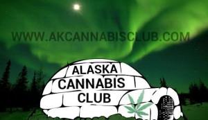 ak cannabis club2